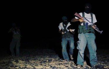 مصر تطارد عناصر من حركة حسم