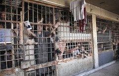 """'La Mort guette à tout moment"""" à l'intérieur de la prison de Saydnaya"""