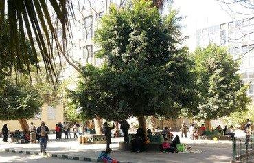 Egyptians of all creeds celebrate Sham el-Nessim