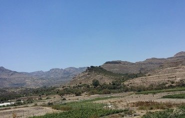 القطاع الزراعي في اليمن يتكبد خسائر كبيرة بسبب الحرب