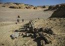 حمله پلیس مصر به مخفیگاه های حسم در الفیوم