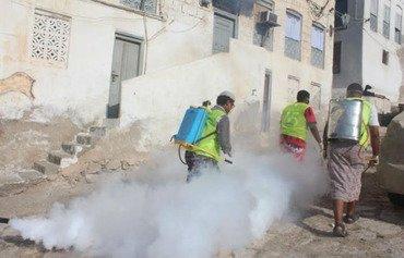 منظمة يمنية غير حكومية تعمل على مكافحة حمى الضنك