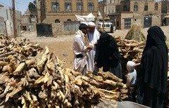 الحطب يشعل مواقد صنعاء وسط فقدان الغاز