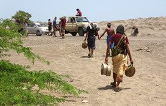 السعودية تطلق مشروعا لنزع الألغام في اليمن