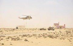 مانورهای نظامی ستاره درخشان 2018 پیوندهای آمریکا و مصر را مستحکم می کند