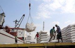 الحكومة اليمنية تدعو الحوثيين للإفراج عن مخزون القمح