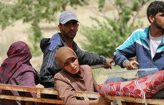 15652 syrian refugees arsal 240 154