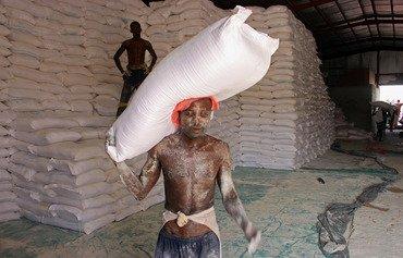 WFP slams Houthis' misuse of Yemen food aid