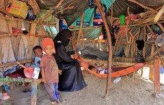 Yemen urges UN to intervene in Hajur district