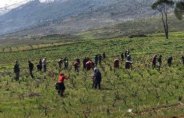 اللاجئون السوريون في لبنان يأملون في العودة لوطنهم