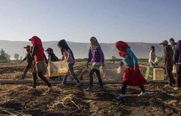 لبنان يعمل على إبقاء أطفال اللاجئين السوريين في المدارس