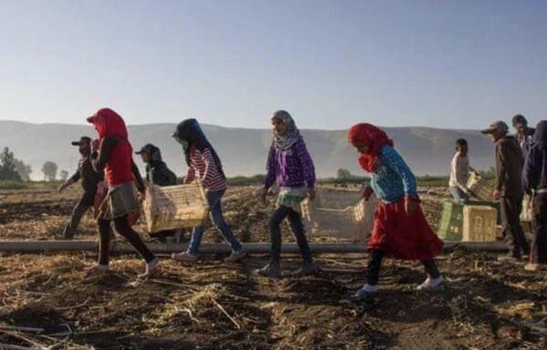 لبنان تلاش دارد کودکان پناهجوی سوری را در مدرسه نگه دارد