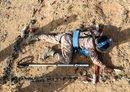 وعده حضرموت به مبارزه با تروریسم در پی چندین حمله